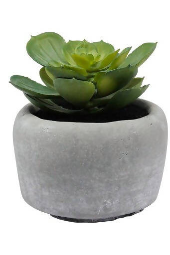 Faux Succulents – Natural Grey Planter