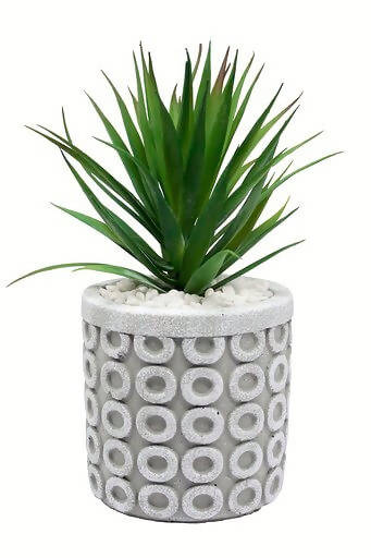 Faux Succulents – Small Loop Planter