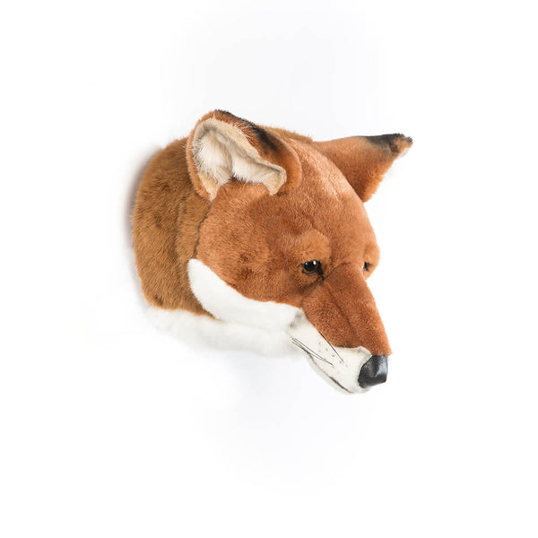 Wild and Soft Animal Heads - £45.95-£82.95