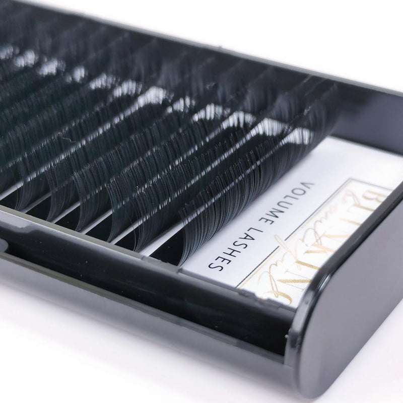 Blinking Beautiful Russian Volume Individual Eyelash Extension XL 16 Row Lash Tray