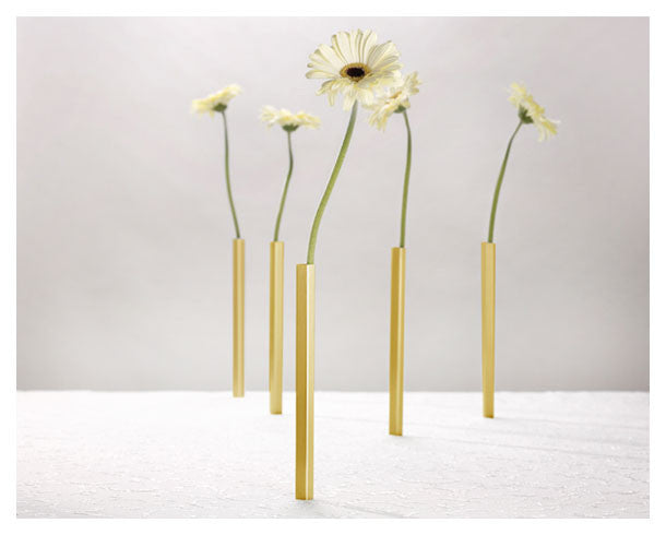 Peleg Design gold free standing Magnetic Vases | Funky home Accessory gifts
