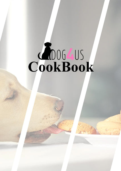 Top Dogs Recipes