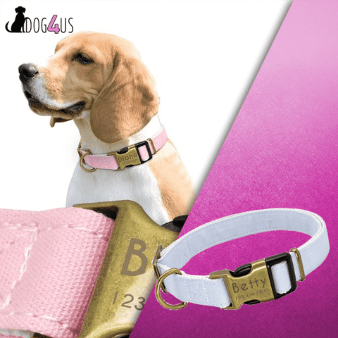 Image of Personalized Dog Collar - Nylon Engrave Name ID | Model: QUIRINUS