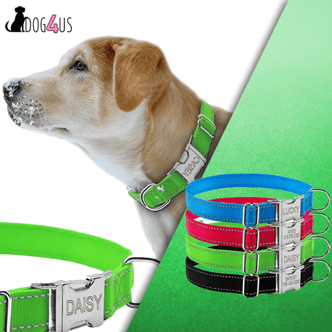 Image of Personalized Dog Collar Reflective Engraved Nylon Night Safe | Model: Napoleon