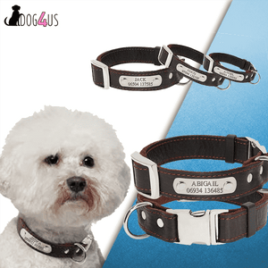 Personalized Dog Collar - Genuine Leather | Model : Kenta