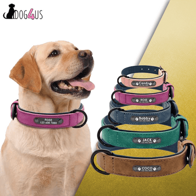 Personalized Dog Collar Leather Engraving Padded | Model: Otto