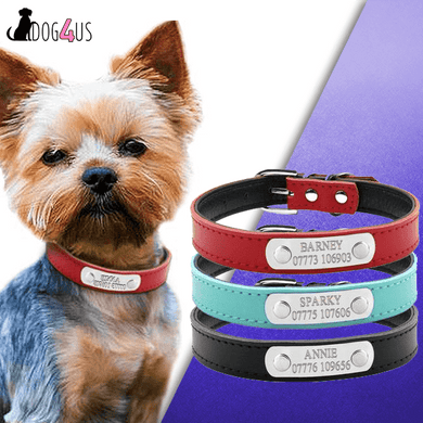 Personalized Dog Collar Leather Inner Padded Model: Barney
