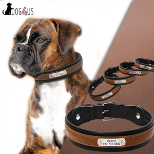 Personalized  Dog Collar Large Dog Collar Genuine Leather | Model : Tobey