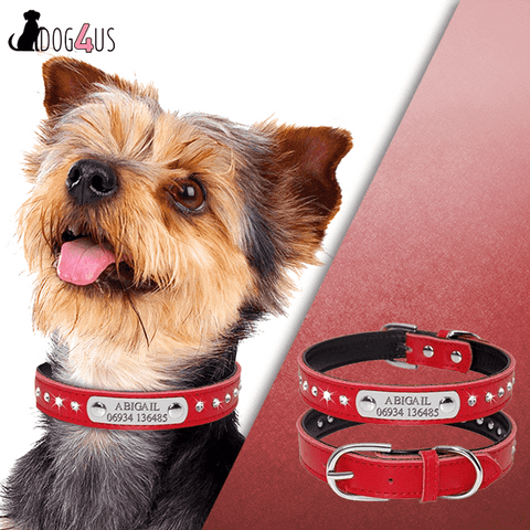 Personalized Dogs Collar Leather with Rhinestone | Model: Sari