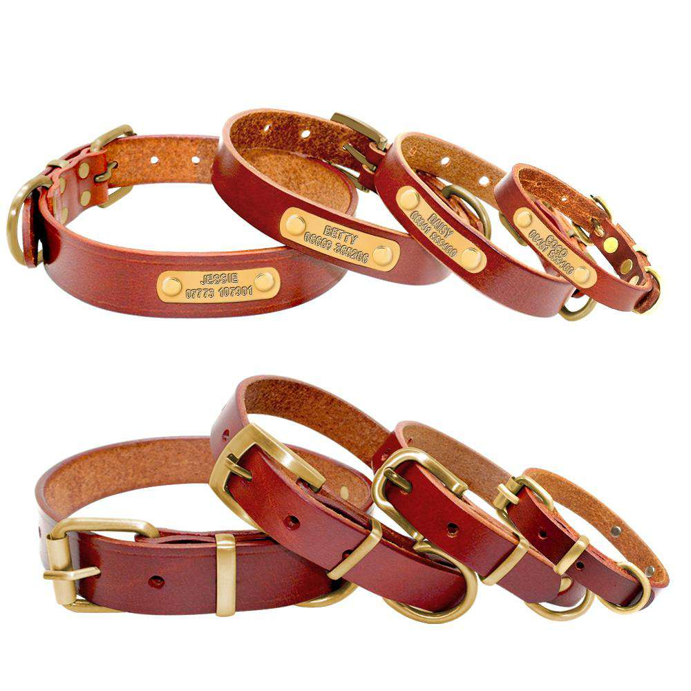 Personalized Dog ID Collar Genuine Leather