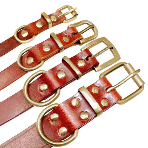 Image of Personalized Dog ID Collar Genuine Leather