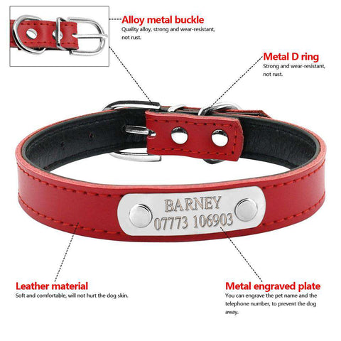Image of Personalized Dog Collar Leather Inner Padded Model: Barney