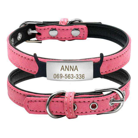 Image of Personalized  Dog Collar With Tag Name | Model: Anna