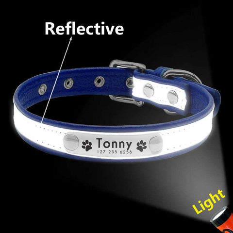Personalized Dog Collar Reflective Waterproof and Odor Proof | Model: Linda