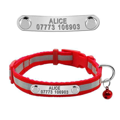 Dog Personalized Collar Reflective For Small Dog & Cats | Model: Felipe