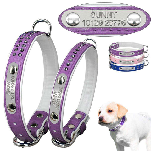 Image of Personalized Dog Collar | Model: Nele