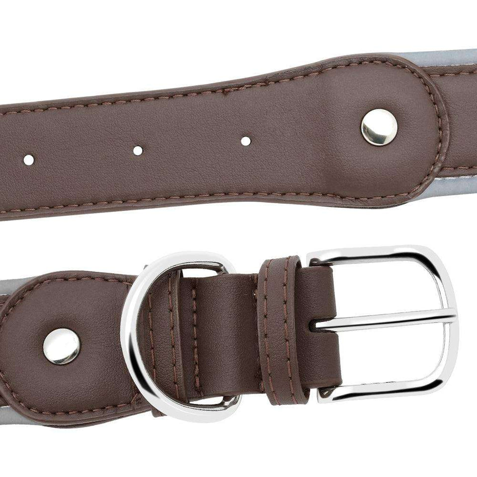 Personalized Dog Collar Reflective with Soft Padded Leather | Model: Erica