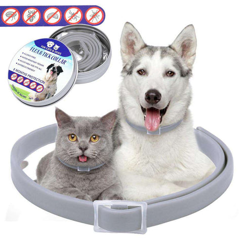 Dog anti Flea Collar Pet Cat Anti Lice Pest Mosquitoes Collars Kill Lice