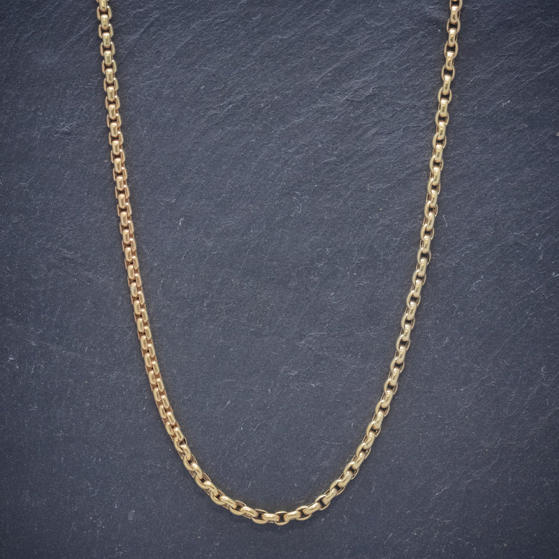 Antique Victorian Long Blecher Chain 18ct Gold On Silver Circa 1900 CHAIN