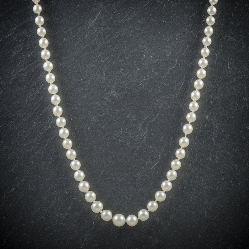 Antique Victorian Pearl Necklace Boxed Circa 1900 FRONT