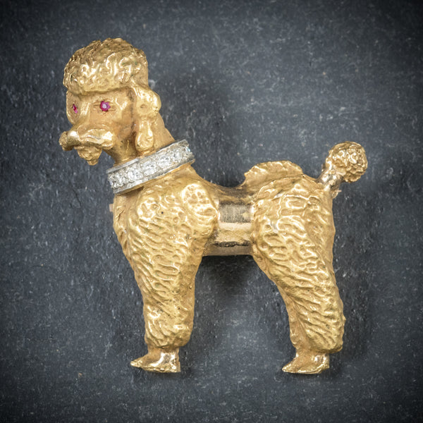 Diamond Dog Brooch 14ct Gold Poodle Circa 1950 FRONT
