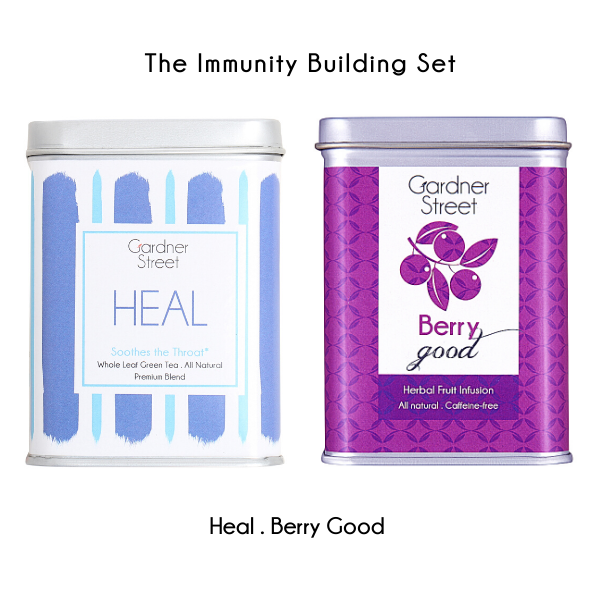 The Immunity Building Set