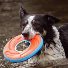 Load image into Gallery viewer, Chuckit Zipflight Dog Frisbee Toy, Medium 21Cm