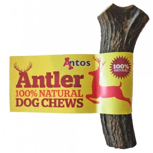 Antos Antler Dog Chew - Available In 3 Sizes - 100% Natural All Shapes May Vary (Large 151 - 220G)