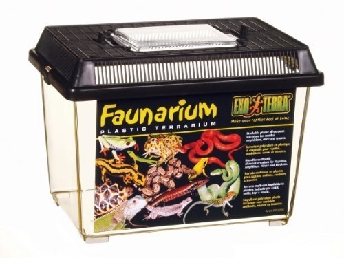 Exo Terra Standard Faunarium To Transport Reptile , Small