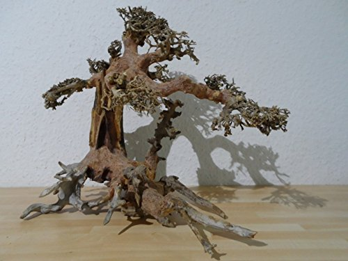 Superfish Natural Wood Bonsai Aquarium Decor Driftwood Large