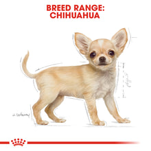 Load image into Gallery viewer, Royal Canin Chihuahua Puppy