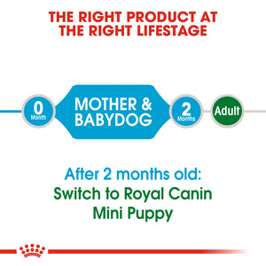 Royal Canin Mini Starter Mother & Baby Dog