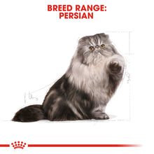 Load image into Gallery viewer, Royal Canin Persian Adult