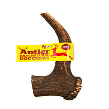 Load image into Gallery viewer, Antos Antler