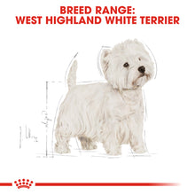 Load image into Gallery viewer, Royal Canin West Highland Terrier Adult