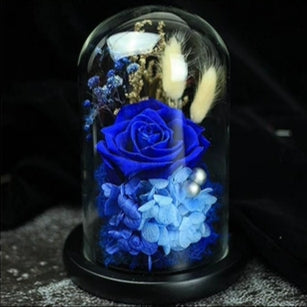Preserved Flower 171 (w led lights)