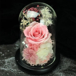 Preserved Flower 169 (w led lights)