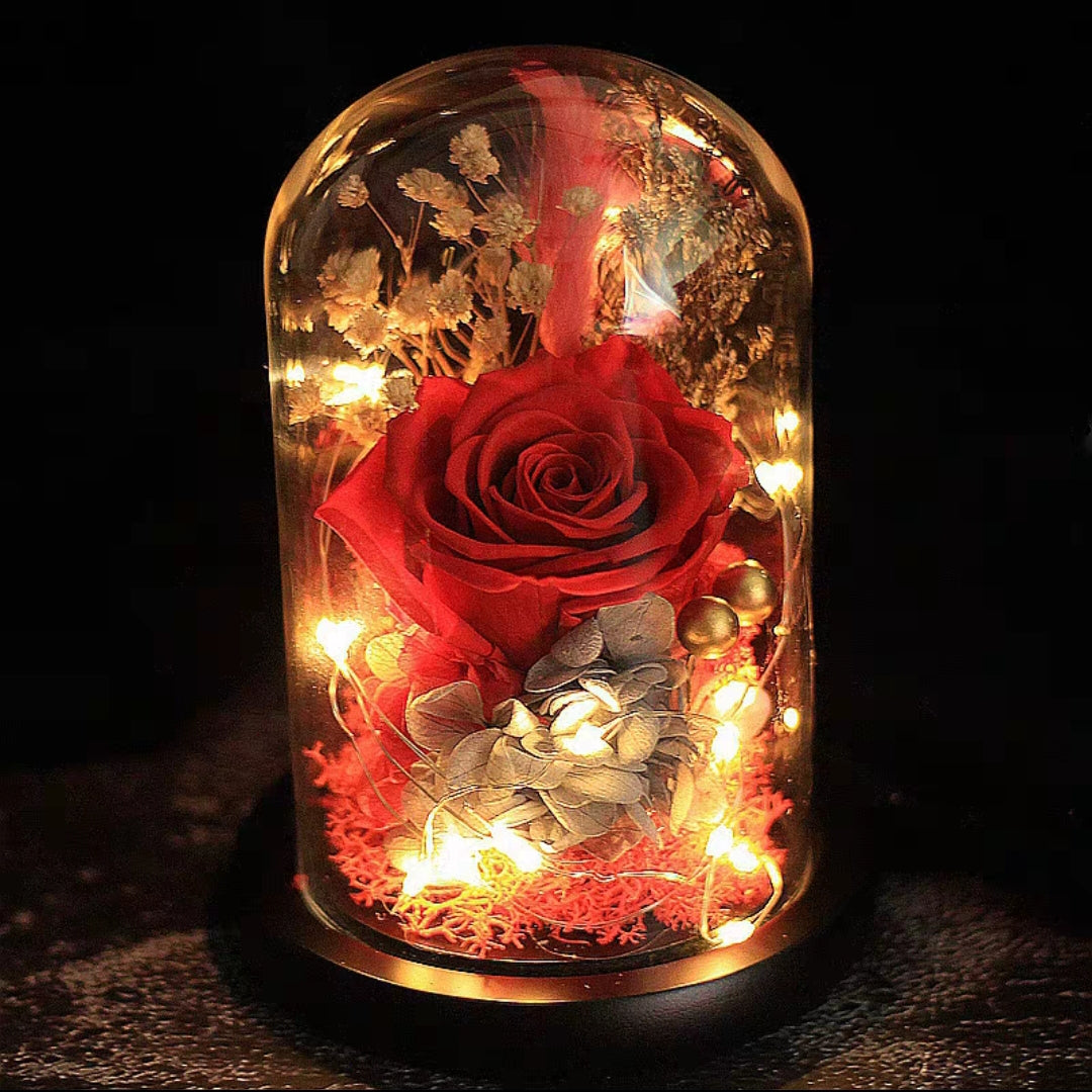Preserved Flower 168 (w led lights)