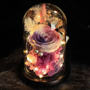 Preserved Flower 173 (w led lights)