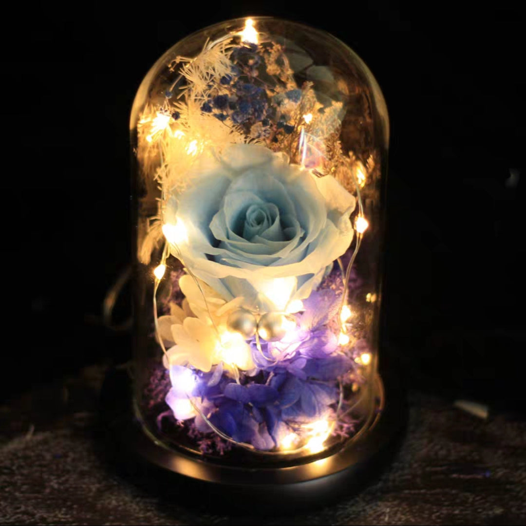 Preserved Flower 170 (w led lights)