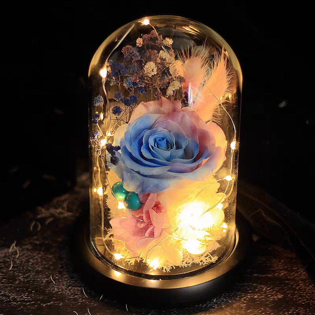Preserved Flower 172 (w led lights)