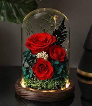 Preserved Flower 178 (w led lights)