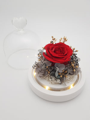 Preserved Flower 258 (w led lights)