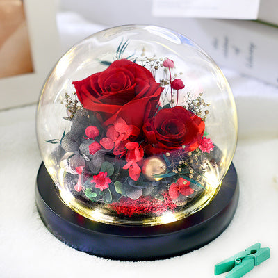 Preserved Flower 324 (w led lights)