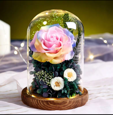 Preserved Flower 283 (w led lights)