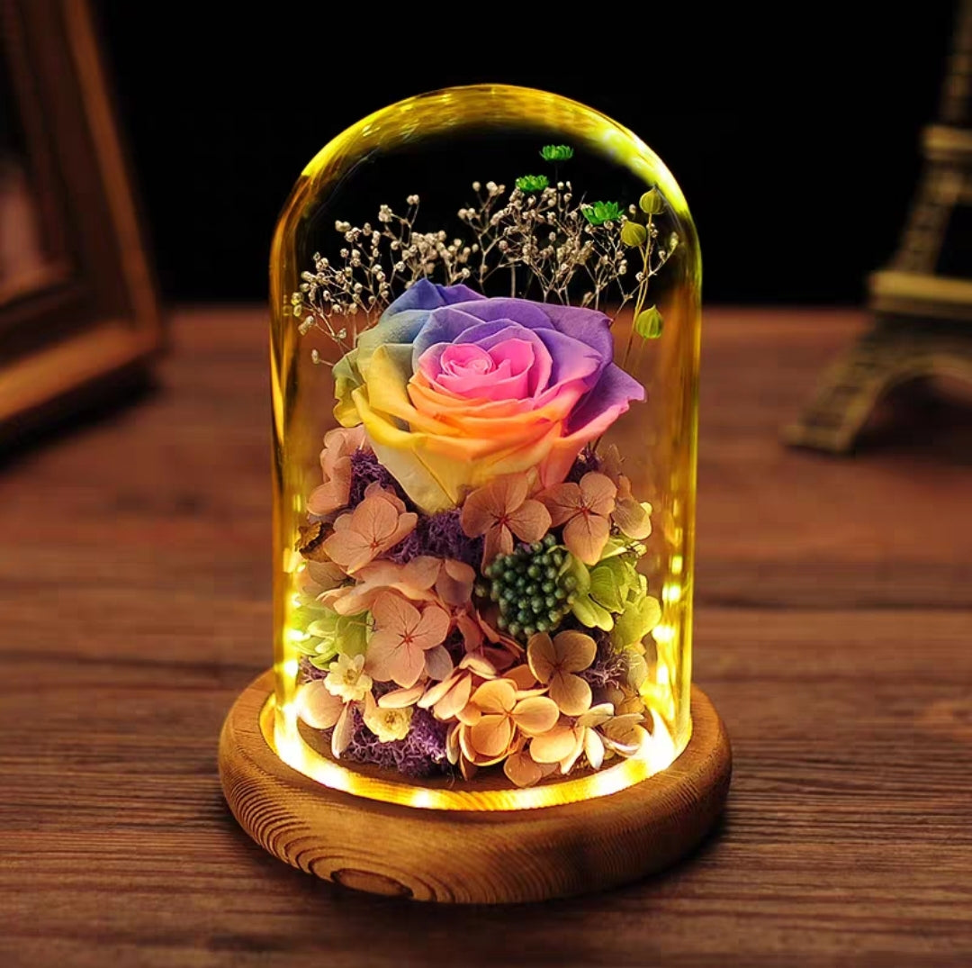 Preserved Flower 309 (w led lights)