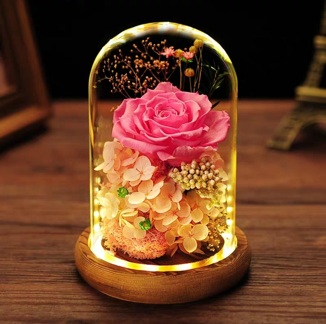 Preserved Flower 310 (w led lights)