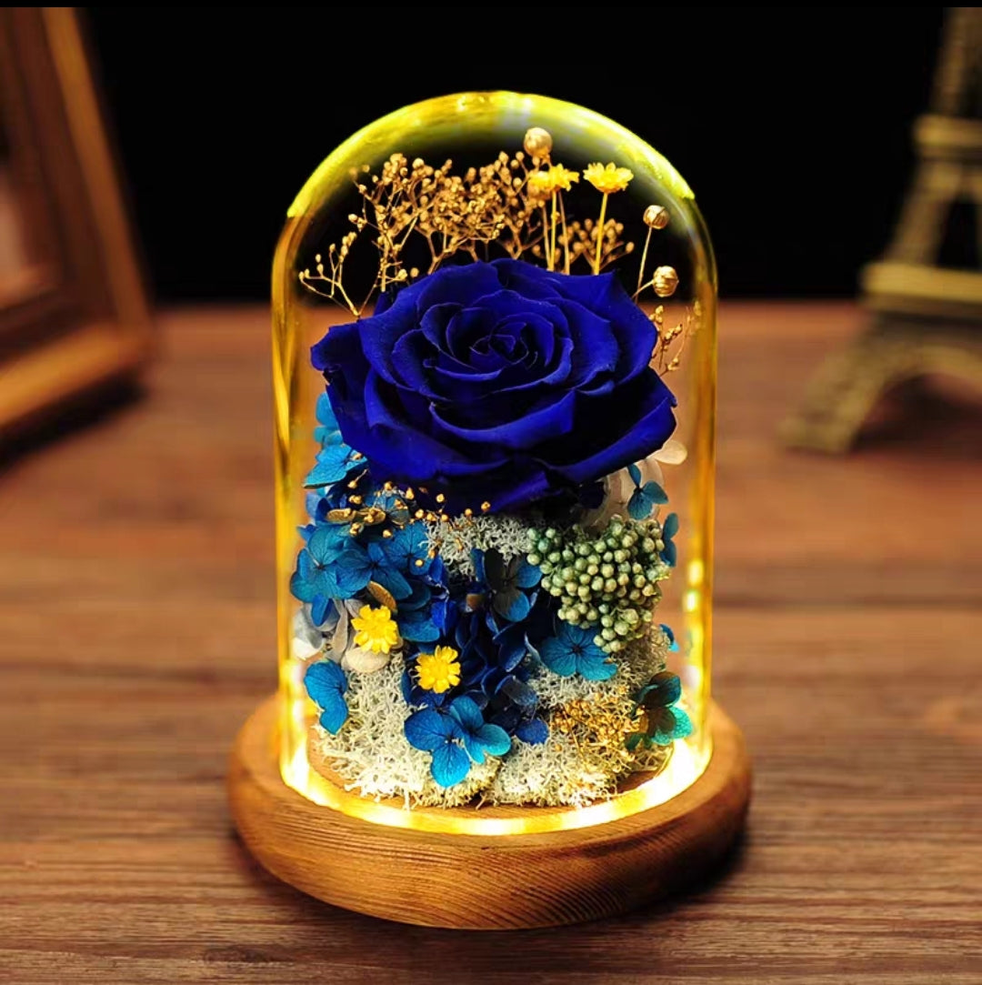 Preserved Flower 311 (w led lights)