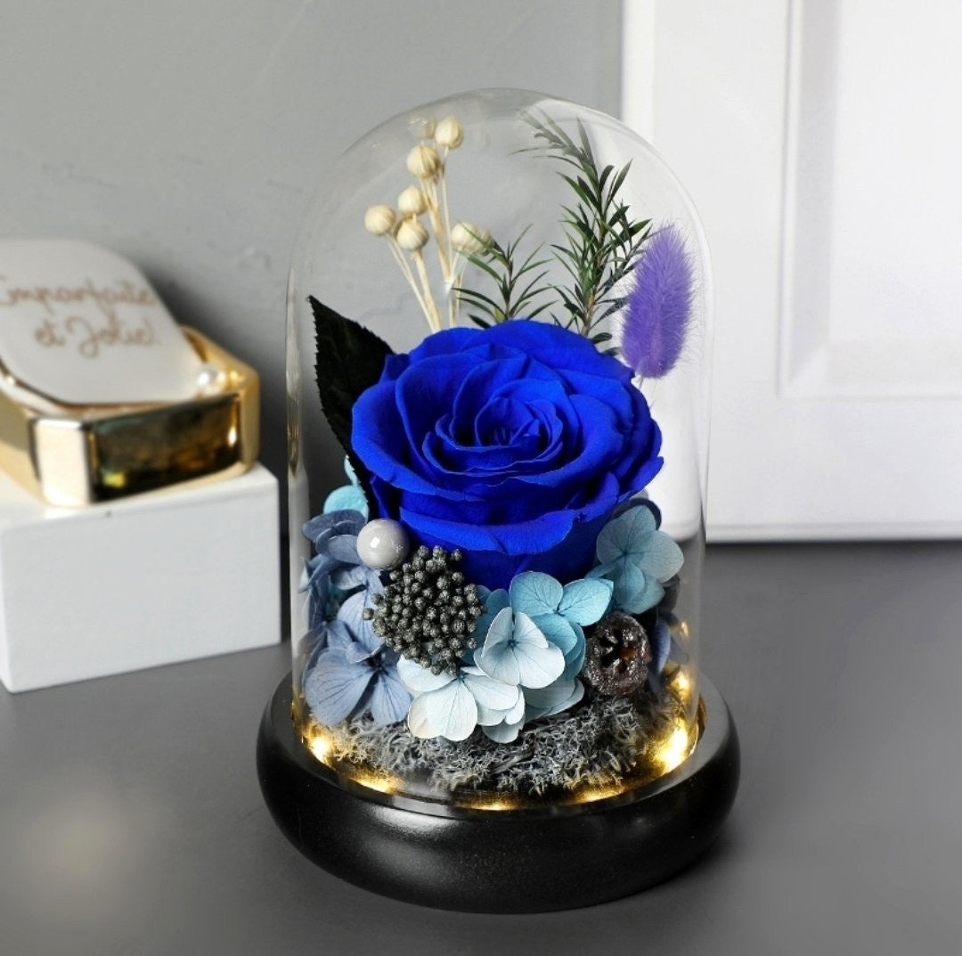 Preserved Flower 383 (w led lights)