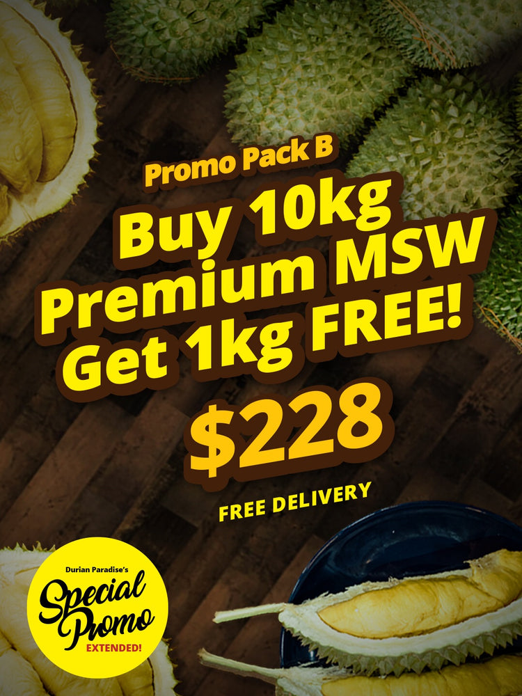 Weekend New Year Promo Pack B (Free Delivery)